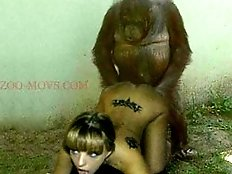 Pretty teen girl fucks by chimp